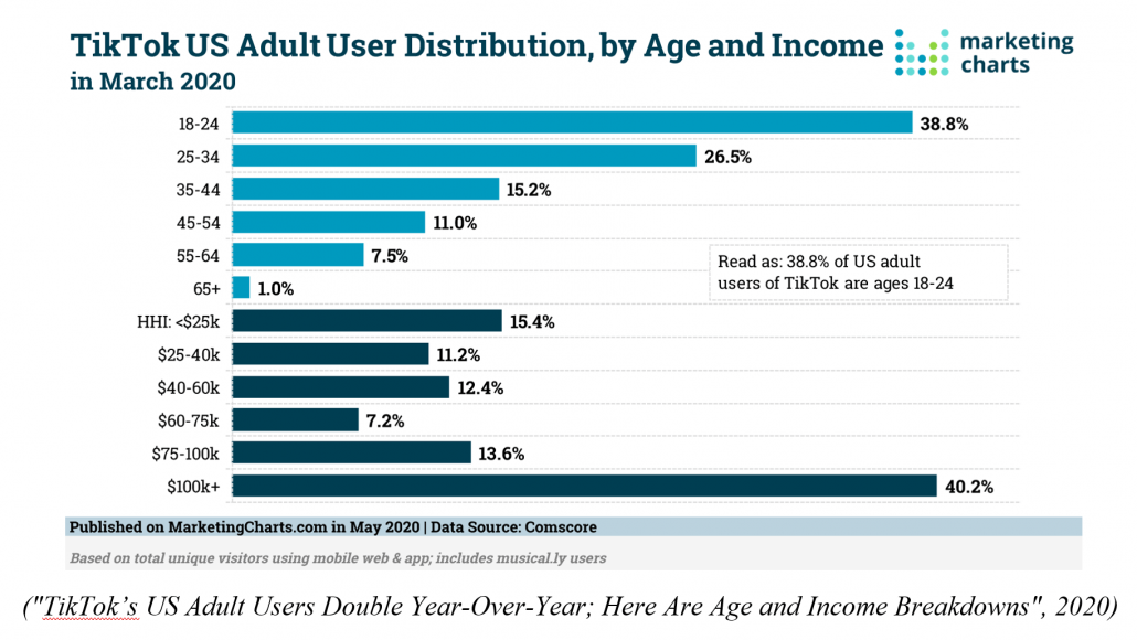 TikTok US Adult User Distribution by Age and Income